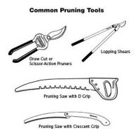 Pruning Tools and Parts